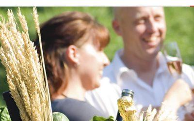 🎙️  Gastro Einkaufsgemeinschaft Gemeinsam-besser – Mit Puderzucker und 50 Euro zur Million
