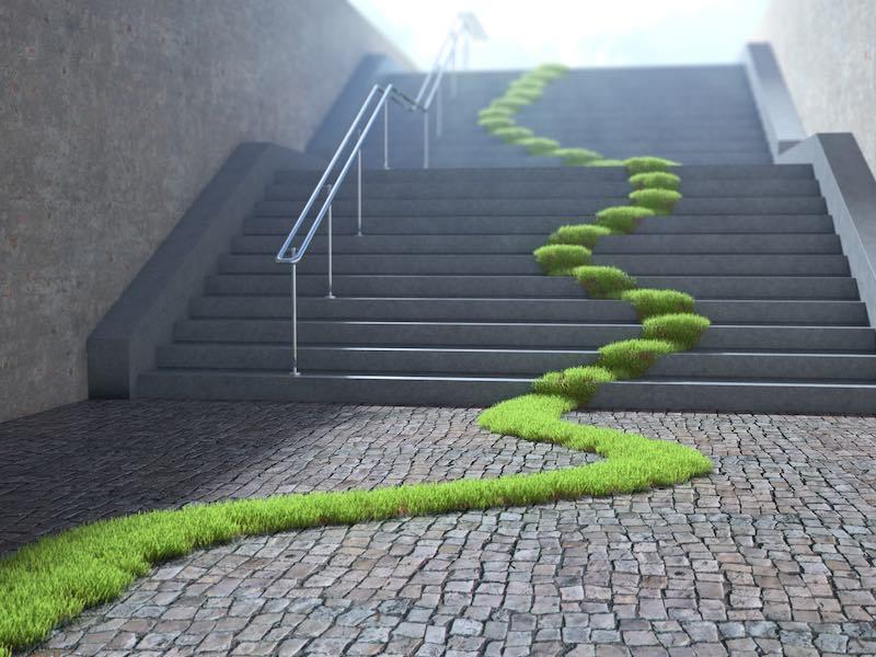 Grüne Wiese über Treppe